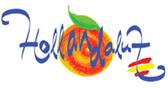 hollandaluz-logo-footer