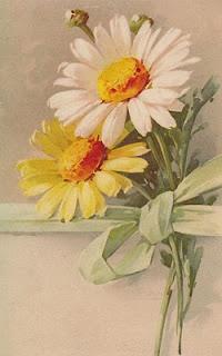 vintage daisy