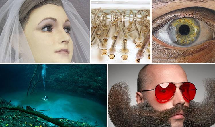 TopBlogs2014-2