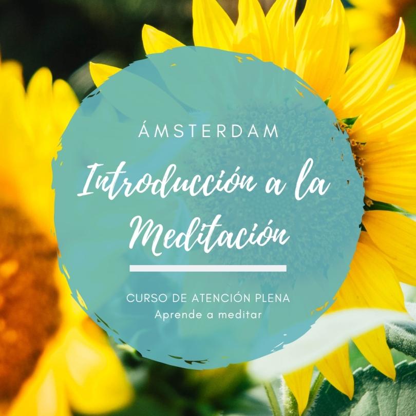 Cursp de Introducción a la Meditación en Ámsterdam